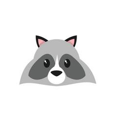 Raccoon cartoon design vector