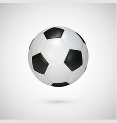 realistic soccer ball black and white classic vector image