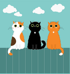 Three kittys on fence vector