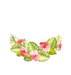 Tropical flower hibiscus vector