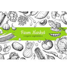 vegetable hand drawn vintage frame vector image