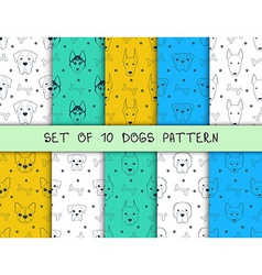 Set of 10 seamless patterns with different breeds vector image