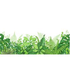 Tropical plants line horizontal border vector