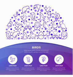 birds concept in half circle with thin line icons vector image