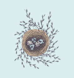 hand drawn nest with vector image