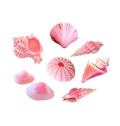 Pink seashells under sea vector