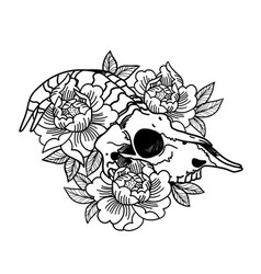 rose tattoo with skull skull a sheep horns vector image