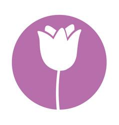 round icon flower cartoon vector image