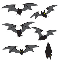 set of red black flying and movement vector image