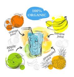 set refreshing fruit drinks vector image