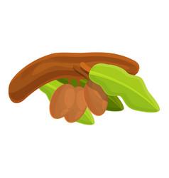 Shea tree wood branch icon cartoon style vector