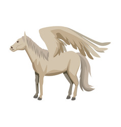 Winged horse pegasus or flying mustang mascot vector