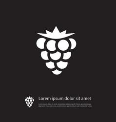 isolated blackberry icon bramble element vector image vector image