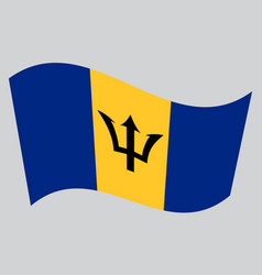 flag of barbados waving on gray background vector image vector image