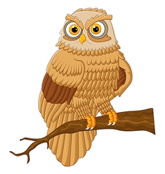 cartoon owl sitting on the branch vector image