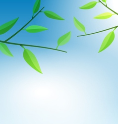Branch Tree with Green Leaves vector image vector image