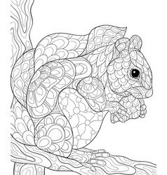 adult coloring bookpage a cute squirrel vector image