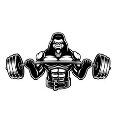 Black and white of a gorilla with barbell vector