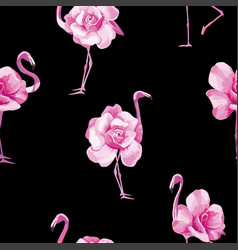 flamingo rose black background vector image