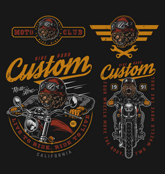 motorcycle vintage colorful badges vector image