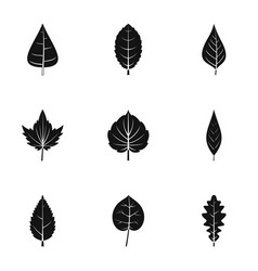 spring leaf icons set simple style vector image