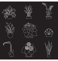 Big houseplants Set of flat potted interior vector image vector image