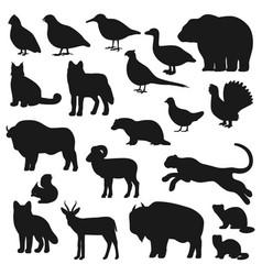 bear duck buffalo wolf panther fox silhouette vector image
