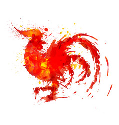 fire rooster made of colorful grunge splashes vector image