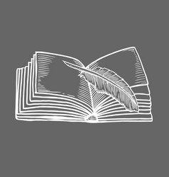 open book isolated vector image