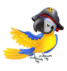 parrot pirate character vector image