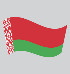 flag of belarus waving on gray background vector image vector image