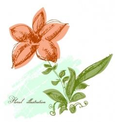 floral illustration vector image