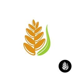 Wheat ear logo vector image