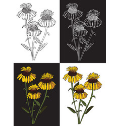 Bouquet yellow flowers vector