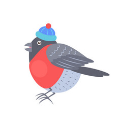bullfinch in knitted hat vector image