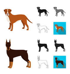 dog breeds cartoonblackflatmonochromeoutline vector image