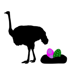 Ostrich with easter eggs vector image