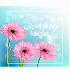 Pink gerbera daisies on a blue bokeh background vector