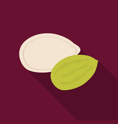 Pumpkin seedsdifferent kinds of nuts single icon vector