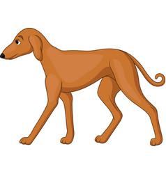 cartoon tall dog vector image