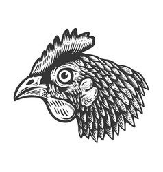 chicken head in engraving style design element vector image