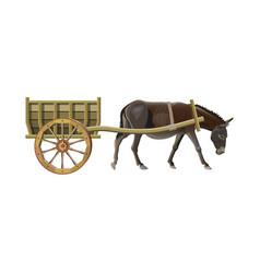 Donkey cart vector