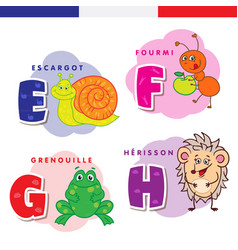 French alphabet snail ant frog hedgehog vector