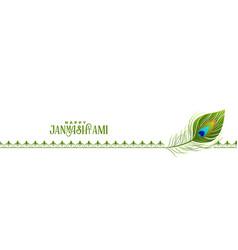 Happy janmashtami festival peacock feather banner vector