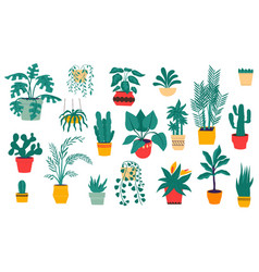 house plants tropical and desert flowers vector image