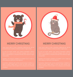 merry christmas icon of bear and cat vector image