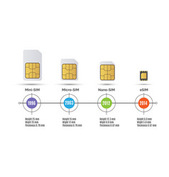 sim card speed vector image