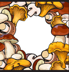 square frame of sketch mushrooms with round place vector image