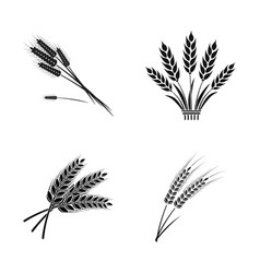 Wheat and stalk sign vector
