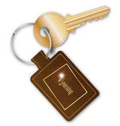 Wyoming key fob with key vector